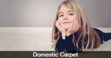 Domestic Carpet